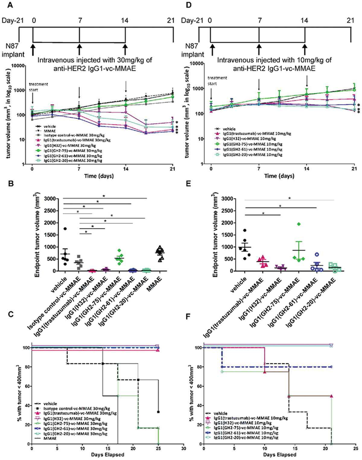 Antibody-drug conjugates with HER2-targeting antibodies from synthetic antibody libraries are highly potent against HER2-positive human gastric tumor in xenograft models