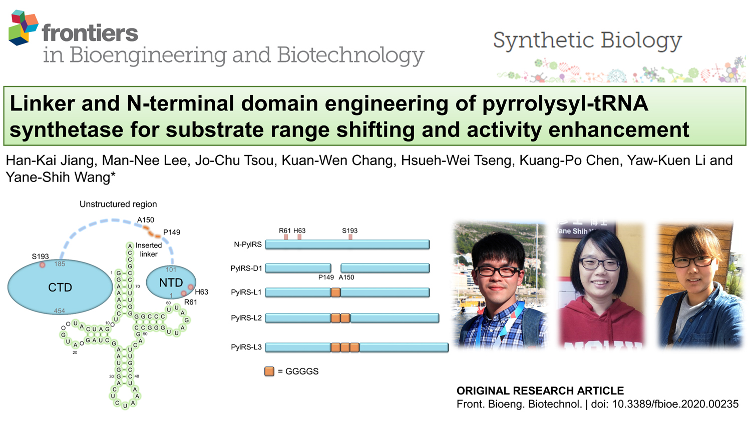 Linker and N-terminal domain engineering of pyrrolysyl-tRNA synthetase for substrate range shifting and activity enhancement