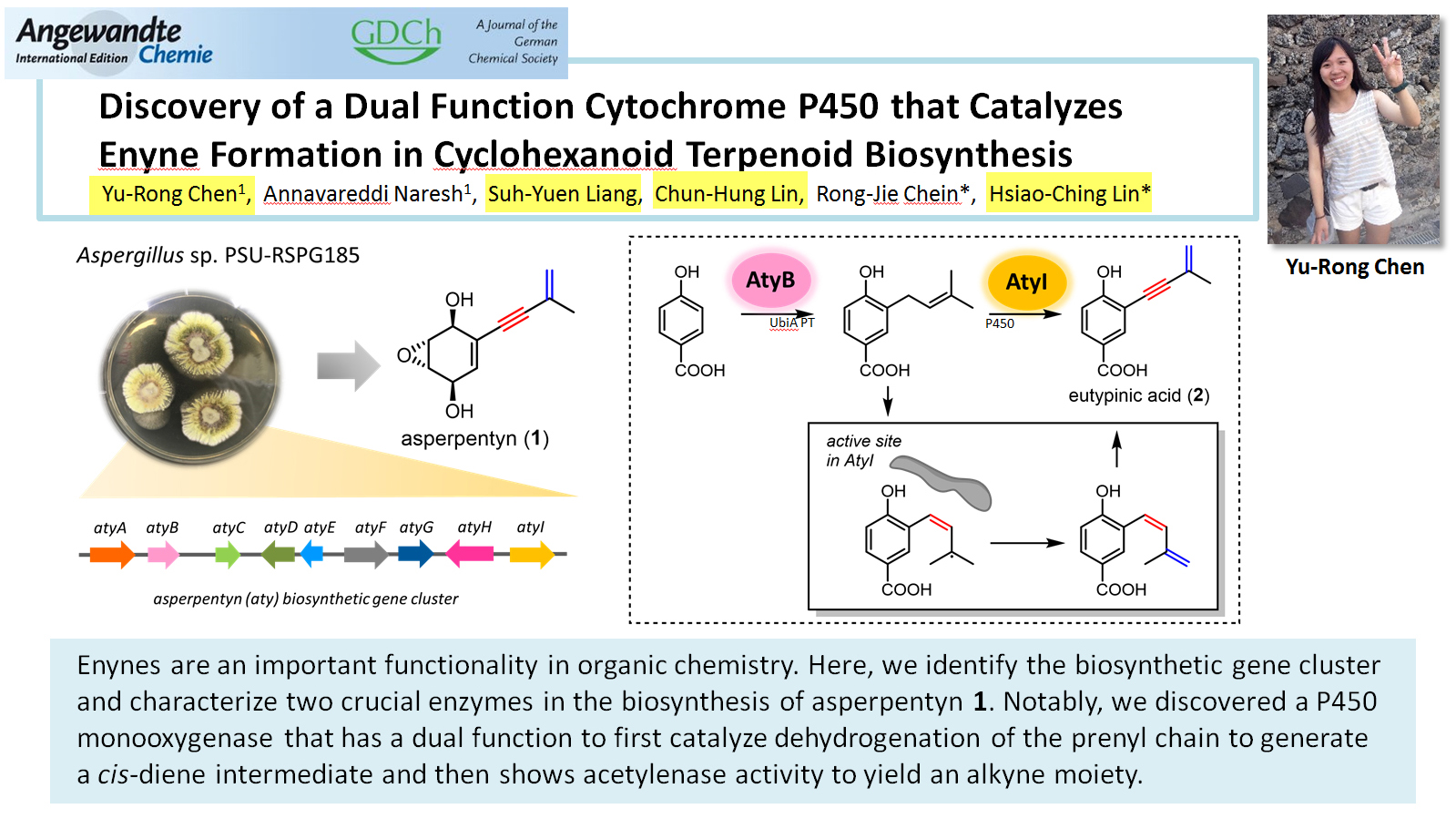 Discovery of a Dual Function Cytochrome P450 that Catalyzes Enyne Formation in Cyclohexanoid Terpenoid Biosynthesis