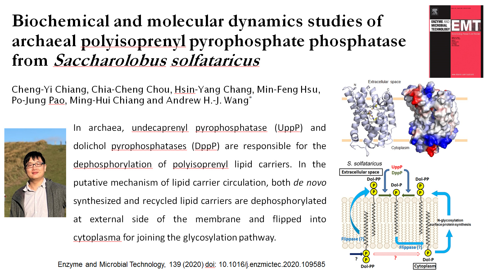 Biochemical and molecular dynamics studies of archaeal polyisoprenyl pyrophosphate phosphatase from Saccharolobus solfataricus