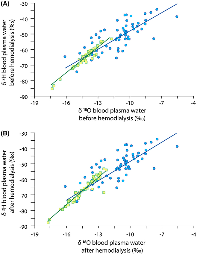 The study of isotopic enrichment of water in human plasma and erythrocyte