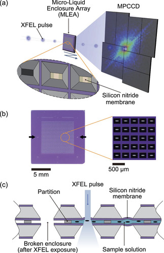 Micro-liquid enclosure array and its semi-automated assembling system for x-ray free-electron laser diffractive imaging of samples in solution